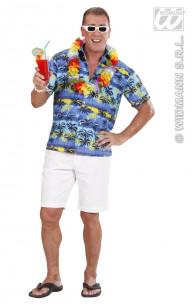 Disfraz Camisa Hawaiana Con...