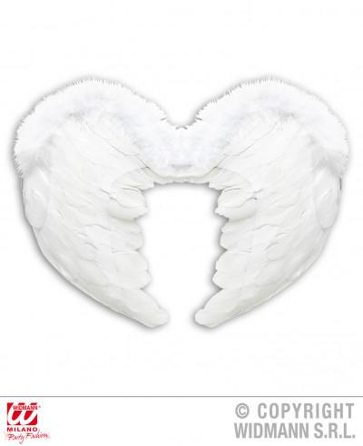 Alas de plumas blancas