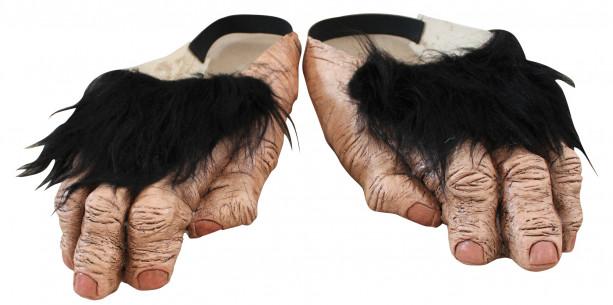 Pies de mono
