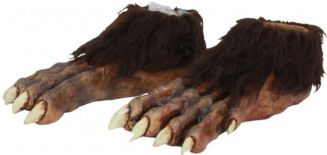 Pies de lobo