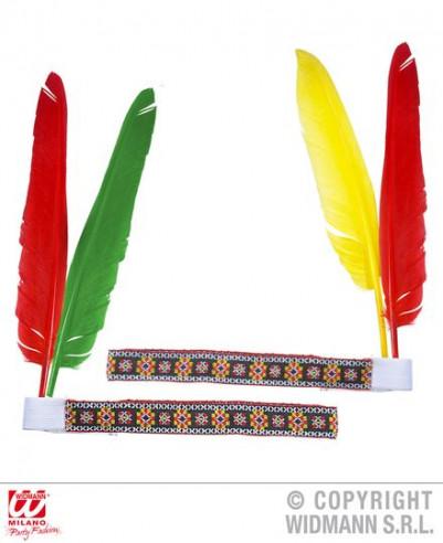 Cinta de indio con plumas