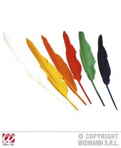 Set plumas indio multicolor